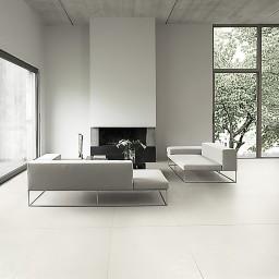 canvass white 1.jpg