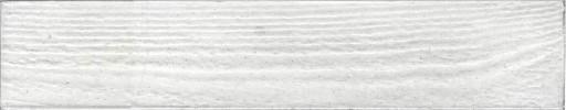 EVOLUTION-White.jpg