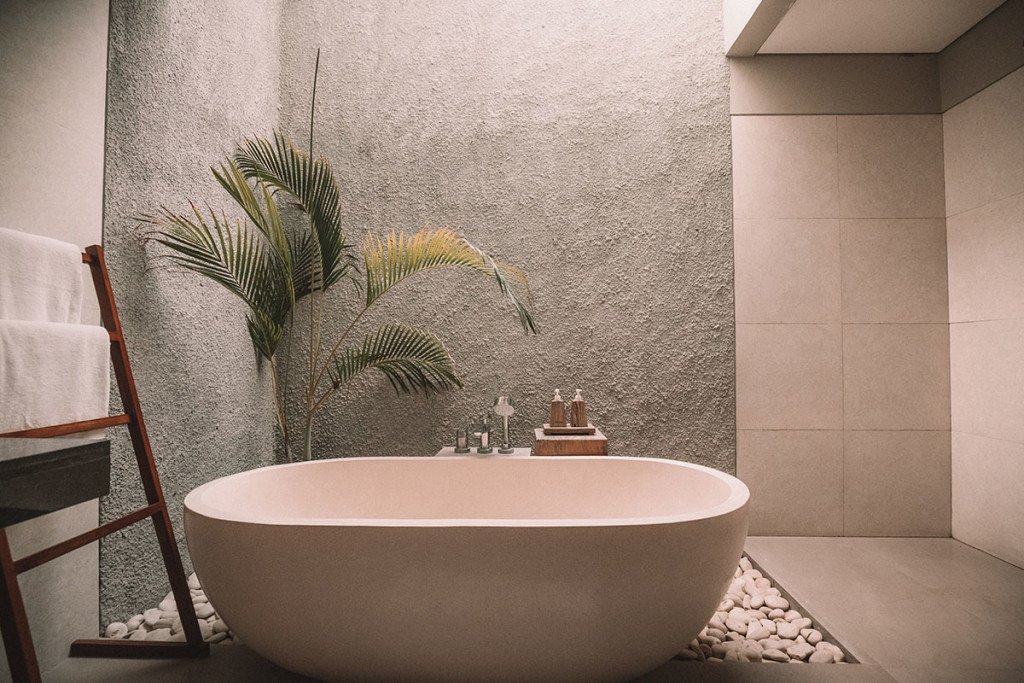 7 Of The Best Plants For Your Bathroom