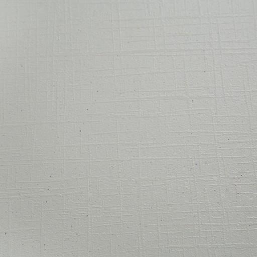 Canvas White_alt4.jpg